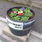 花植え後の様子